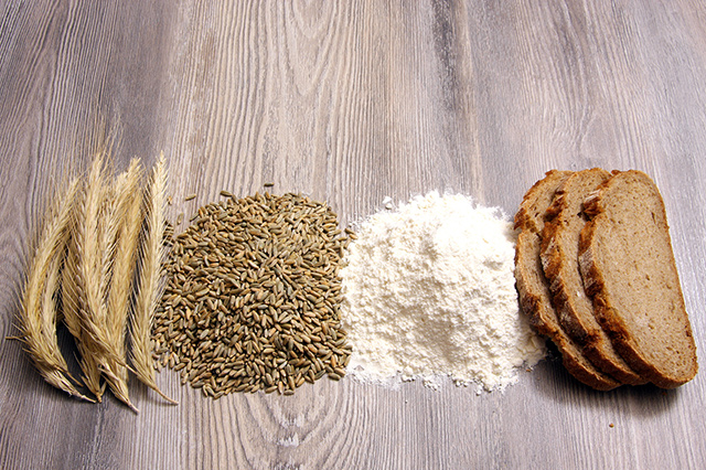 De l'épi à la farine de Seigle